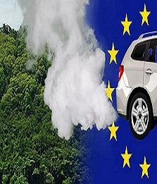 """Biofuel"": EU destroys 700,000 hectares of rainforest"