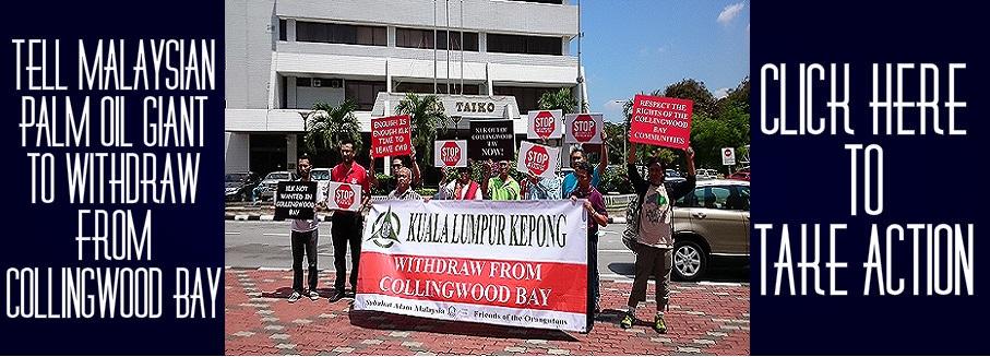 KL Kepong refuses to quit Collingwood Bay despite court loss