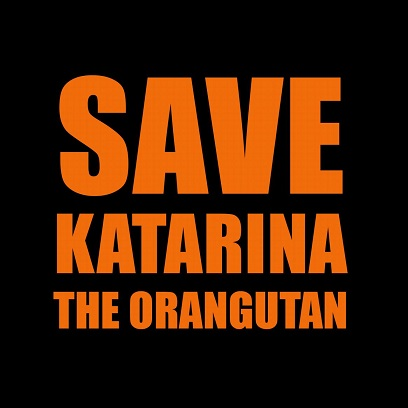Help us get Katarina the orangutan sent to a sanctuary