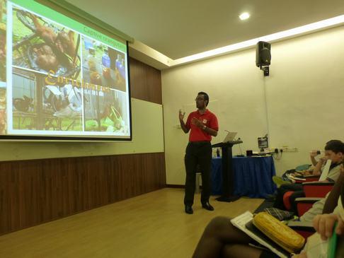 Orangutan public awareness volunteers wanted