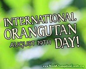 International Orangutan Day in Malaysia!