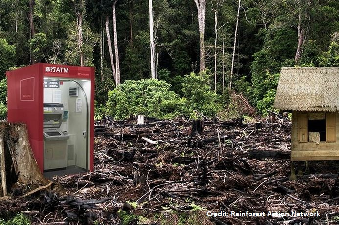 The banks and investors exposed to deforestation risks in Southeast Asia