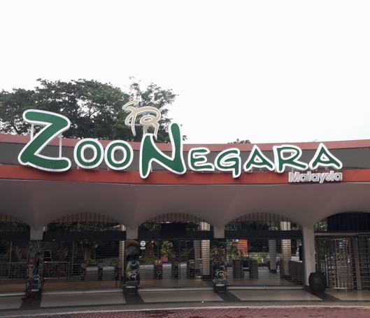 Why won't PERHILITAN prosecute Zoo Negara?